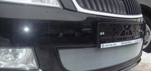 radiator-zashita